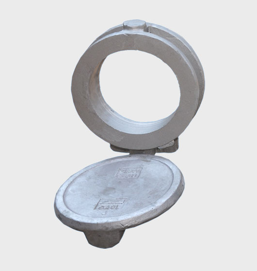 Butterfly Valve Body & Disc